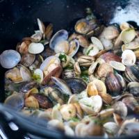 Muslinger i massevis og stegte sprutter - Andalusien i gryden